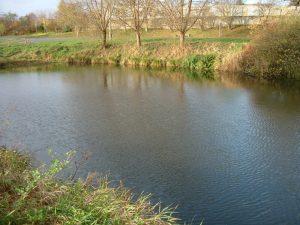Gewässermessung Muldeaue bei Löbnitz in Sachsen